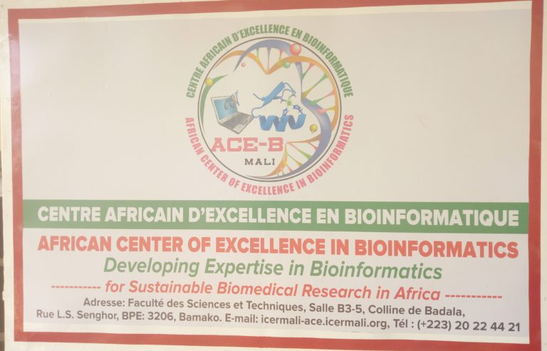 African Center of Excellence in Bioinformatics (ACE-B)